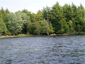 Photo of 000 Dock Rd., Long Lake, NY 12847 (MLS # 153692)