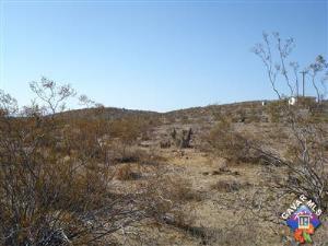 Photo of Border Joshua Tree Uninc - Road, JOSHUA TREE, CA 92252 (MLS # 1106401)