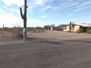Photo of 1907 E FOOTHILL Street, Apache Junction, AZ 85119 (MLS # 5686398)