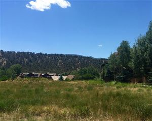 Photo of 492 Settlement Lane, Carbondale, CO 81623 (MLS # 150891)
