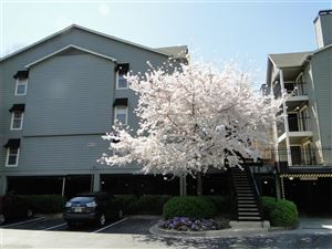 Photo of 323 Granville Court NE, Sandy Springs, GA 30328 (MLS # 5866861)