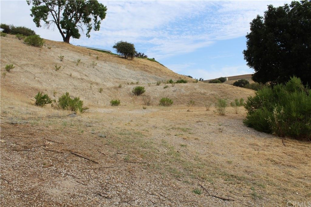Photo for 1847 Locust Street, Paso Robles, CA 93446 (MLS # NS17143683)