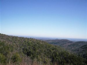 Photo of 8605 HACKBERRY RD, Connelly Springs, NC 28612 (MLS # 9580091)