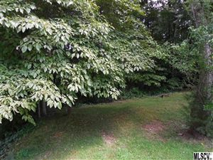 Photo of 811 HILLSFARM ST, Lenoir, NC 28645 (MLS # 9584103)