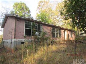 Photo of 1215 MAIDEN WOODS CIR, Maiden, NC 28650 (MLS # 9591254)
