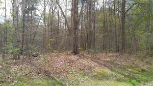 Photo of 0 MCCOMBS ST, Newton, NC 28658 (MLS # 9587326)