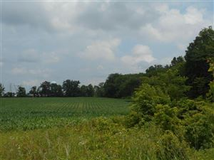 Photo of 0 State Route 37, Sunbury, OH 43074 (MLS # 217023781)