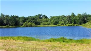 Photo of 4169 Chisolm Road, Johns Island, SC 29455 (MLS # 17022671)