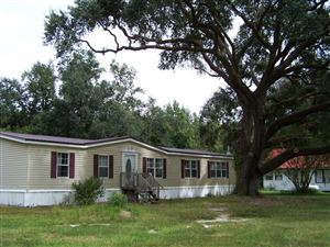 Photo of 17628 Sniders Highway, Islandton, SC 29929 (MLS # 17029992)