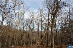 Photo of 1450 CRAWFORDS CLIMB #Rodes Valley Foothil, NELLYSFORD, VA 22958 (MLS # 568804)