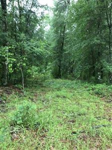 Photo of Lot 3 Mohican Drive, Georgetown, SC 29440 (MLS # 1712459)
