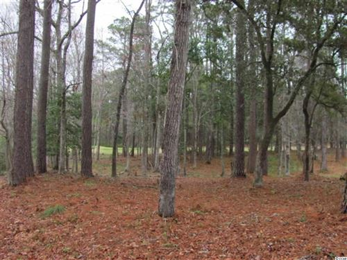 Photo of 131 Captain Anthony Lane, Georgetown, SC 29440 (MLS # 1718543)