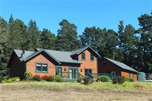 Photo of 1600 Cameron Road, Elk, CA 95432 (MLS # 26007)