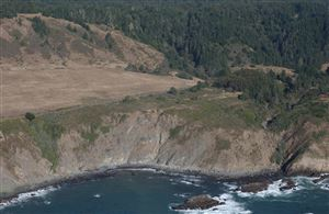 Tiny photo for 2900 S Highway 1, Elk, CA 95432 (MLS # 25749)