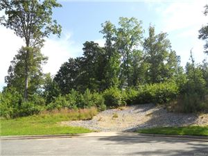 Photo of 20012 Chesdin Harbor Drive, PETERSBURG, VA 23803 (MLS # 1737326)