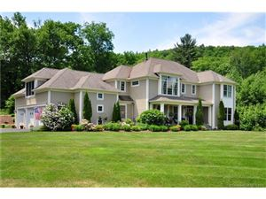 Photo of 203 Cone Meadow Court, Granby, CT 06090 (MLS # G10236021)