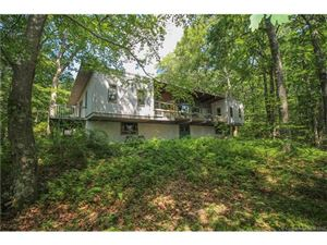 Photo of 29 Lighthouse Road, Woodbury, CT 06798 (MLS # W10238039)