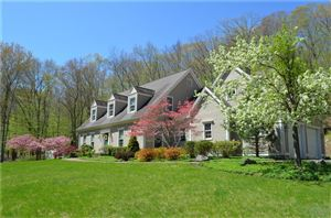 Photo of 381 2nd Hill Falls Lane, Bridgewater, CT 06752 (MLS # 99177040)