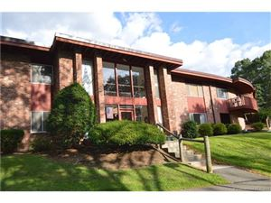 Photo of 126 Sherman Hill Road #C11, Woodbury, CT 06798 (MLS # L10240103)
