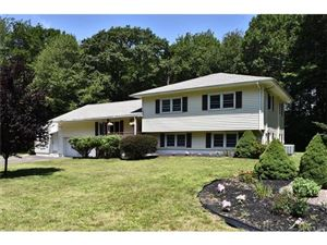 Photo of 46 Williams Drive, Prospect, CT 06712 (MLS # N10236251)