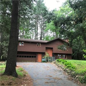 Photo of 88 Laurel Hill Drive, Woodstock, CT 06282 (MLS # 170033414)