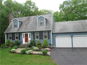Photo of 17 Bayberry Place, Salem, CT 06420 (MLS # E10223487)