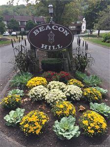 Photo of 124 Essex Court #124, Beacon Falls, CT 06403 (MLS # 170017512)