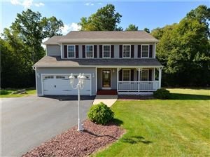 Photo of 20 Jeanetti Drive, Derby, CT 06418 (MLS # 170011539)