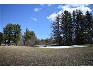 Photo of 0 Mountain Lane, Farmington, CT 06032 (MLS # G10206621)
