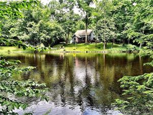 Photo of 85 East River Road, Barkhamsted, CT 06063 (MLS # L10202751)