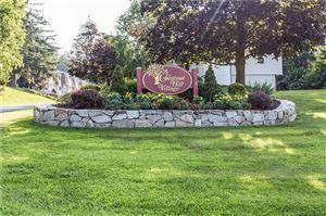 Photo of 99 Chestnut Street #E, Bethel, CT 06801 (MLS # 170000901)