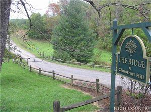 Photo of Lot 13 Deer Thicket Lane, Crumpler, NC 28617 (MLS # 203749)