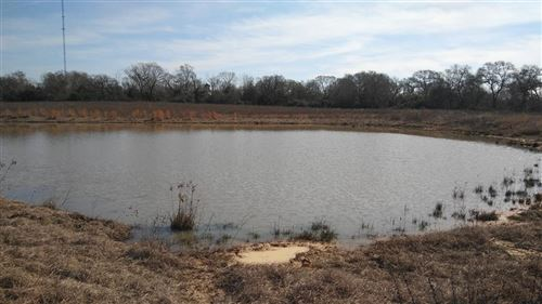 Photo of TR 93-1 Mitchamore Road, Hempstead, TX 77445 (MLS # 62013644)