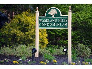 Photo of 207 Woodland Hills Road, White Plains, NY 10603 (MLS # 4718059)