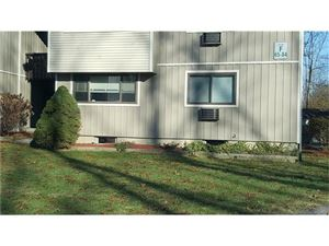 Photo of 81 Patterson Village Court, Patterson, NY 12563 (MLS # 4750142)