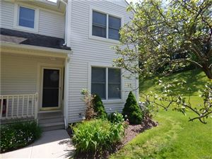 Photo of 107 Cornwall Meadows, Patterson, NY 12563 (MLS # 4728155)