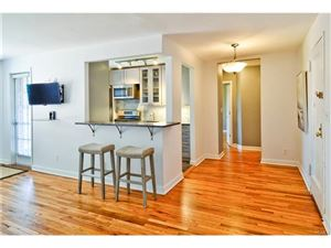 Photo of 565 Broadway, Hastings-on-Hudson, NY 10706 (MLS # 4745369)