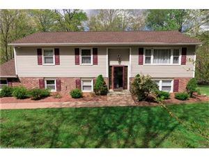 Photo of 119 Red Mills Road, Mahopac, NY 10541 (MLS # 4716376)
