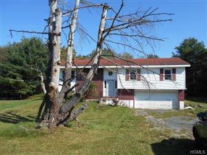 Photo of 338 Horseshoe Lake Road, Swan Lake, NY 12783 (MLS # 4752426)