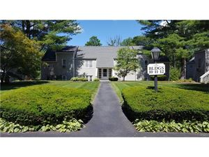 Photo of 1102 Holly Stream Court, Brewster, NY 10509 (MLS # 4729542)