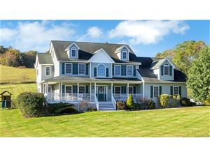 Photo of 13 Dickison Road, Westtown, NY 10998 (MLS # 4746746)