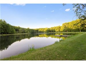 Photo of 93 Trout Brook Road, Cold Spring, NY 10516 (MLS # 4709792)