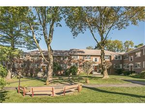 Photo of 121 North Broadway, White Plains, NY 10603 (MLS # 4745901)