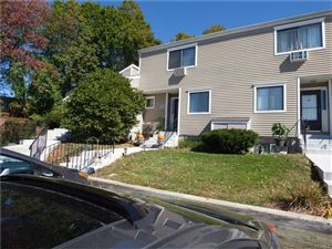 Photo of 22 Brewster Woods Drive, Brewster, NY 10509 (MLS # 4743970)