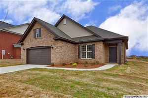Photo of 29741 THUNDERPAW DRIVE, HARVEST, AL 35749 (MLS # 1076032)
