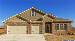 Photo of 314 LADY HAWK LANE, HUNTSVILLE, AL 35824 (MLS # 1076122)