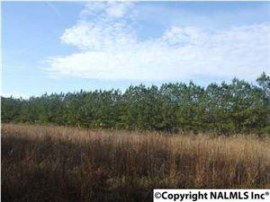 Photo of COUNTY ROAD 641, MENTONE, AL 35984 (MLS # 1076191)