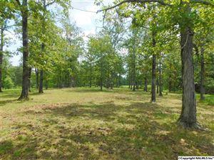 Photo of Lot 30 COUNTY ROAD 597, CEDAR BLUFF, AL 35959 (MLS # 1076201)