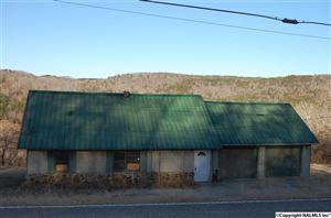 Photo of 5835 UNDERWOOD MOUNTAIN ROAD, TUSCUMBIA, AL 35674 (MLS # 1080227)