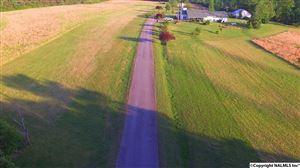 Photo of 1141 COUNTY ROAD 408, DUTTON, AL 35744 (MLS # 1068328)